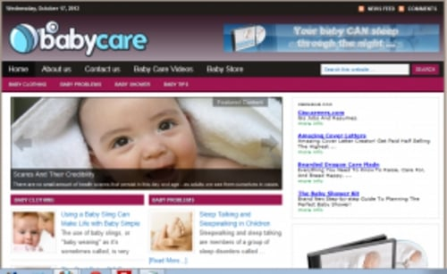 Pay for Baby Care Blog - WordPress Blog with PLR