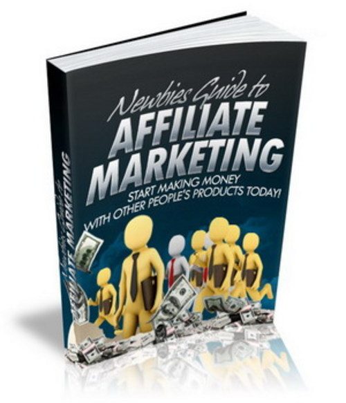 Pay for Newbies Guide To Affiliate Marketing - eBook with MRR