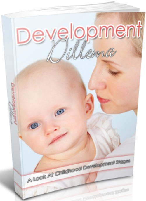 Pay for Development Dilemma - eBook with MRR