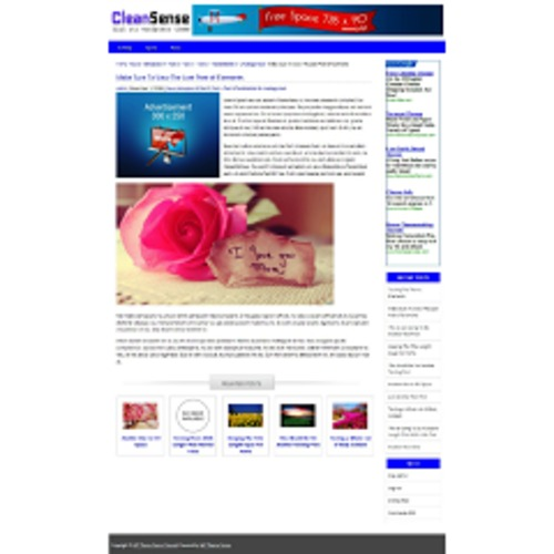 Pay for CleanSense - WP Theme with PLR License