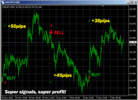 Thumbnail Fibonacci Mystery - The Most Accurate Complete Package Forex