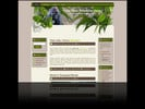 Thumbnail Wild Minisite Template and Wordpress Theme 3 Pack