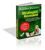 Thumbnail Credit Repair Strategies Revealed  (MRR)