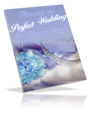 Pay for The Perfect Wedding Guide