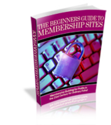 Pay for 4 Brand New PLR Ebooks Package