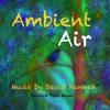 Thumbnail Ambient Air
