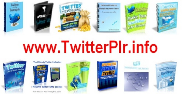 Pay for *NEW 18 TWITTER Ebook & Video Reseller Resale Rights + Bonus