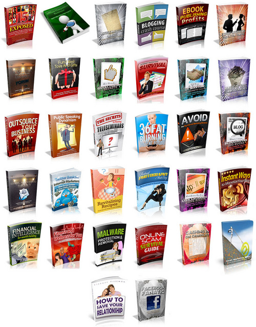 Pay for The PLR Insights Collection