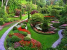 Thumbnail LANDSCAPE GARDENING-Beautifies and Increases The Value