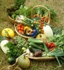 Thumbnail The Edible Front Yard-Back Yard-Any Yard-