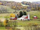 Thumbnail Great Amish Recipes