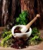 Thumbnail Aromatherapy Or Massage