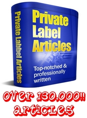 Pay for PLR Mega Pack - 131,000 Articles - Any Topic You Need!