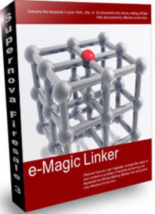 Pay for *NEW* E Magic Linker 2011