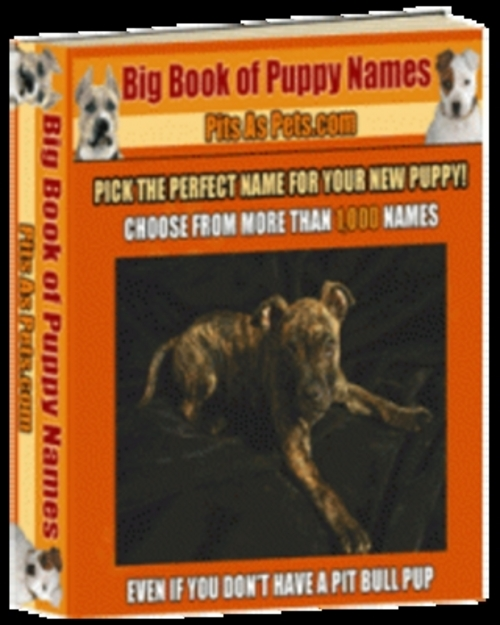 Pay for *NEW* Big Book Of Puppy Names 2011