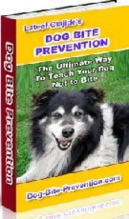 Pay for *New* Dog Bite Prevention: How To Stop Your Older Dog 2011