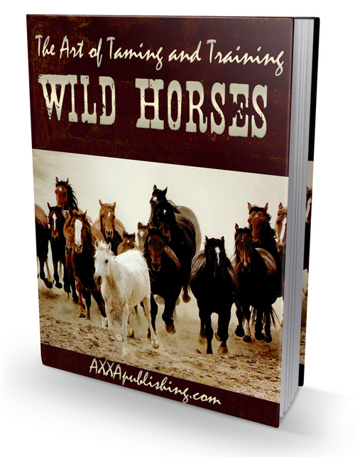 Pay for wild Horses