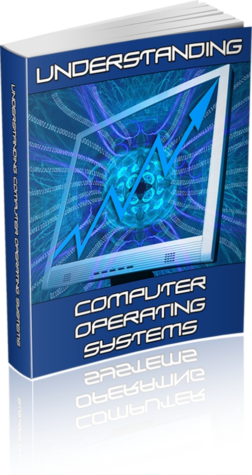Pay for Understanding Computer Operating Systems PLR