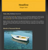 Thumbnail 10 PLR Wordpress SalesPage Themes