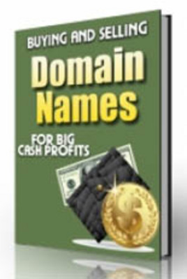Pay for Buying and Selling Domain Names