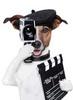 Thumbnail Video Marketing Mastery