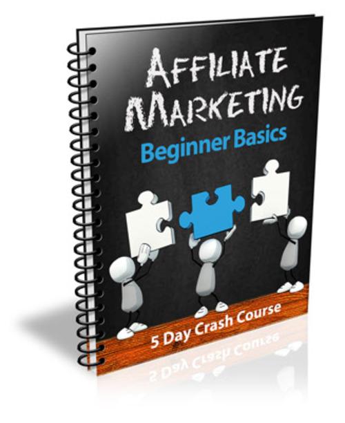 Pay for Affiliate Marketing Beginner Basics