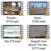 Thumbnail Monstrous Beach Stock Video Footages in HD 1080p