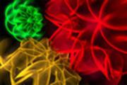 Thumbnail VIDEO-FUEL.COM - 0012 HD 1080 - Luminescent Flowers