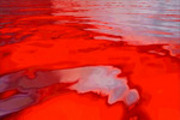 Thumbnail VIDEO-FUEL.COM - 0131 - Bloody Waters