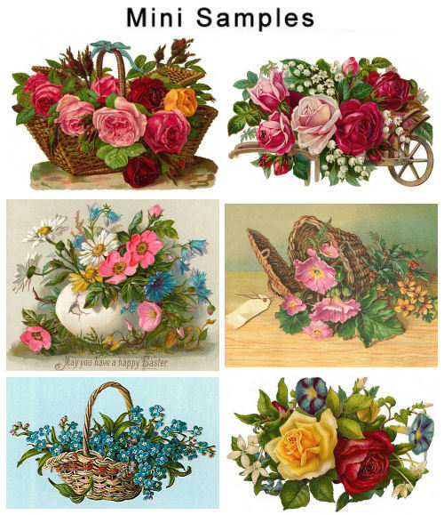 Pay for Vintage Flowers Photos 800