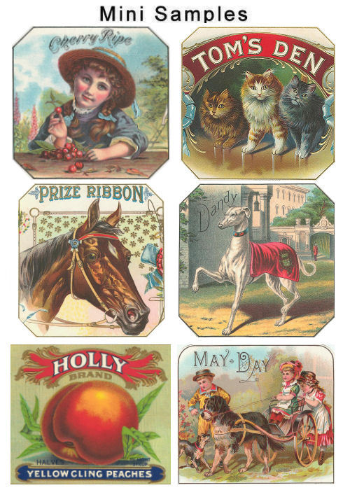Pay for Vintage Label Images over 700 Images