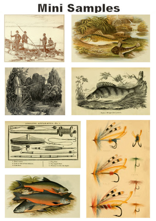 Pay for All about Fishing vintage PDF books