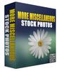 Thumbnail More Miscellaneous Stock Photos V32016