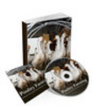 Thumbnail Poultry Farming Audio Books Comes with Transferable MRR