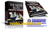 Thumbnail Niche Blog Profitz Video Training Course - Master Resale Rights
