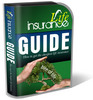 Thumbnail Life Insurance PLR Website Templates Pack