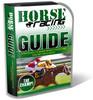 Thumbnail Horse Racing PLR Minisite Templates