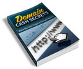 Thumbnail Domain Cash Secrets PLR Ebook - Domain Flipping