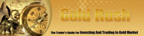Thumbnail Gold Rush Website Template - WP Themes PLR Pack