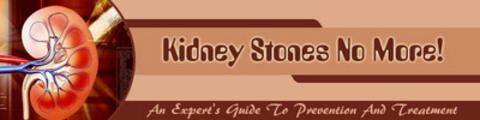 Thumbnail Kidney Stones Website Template Plr Pack