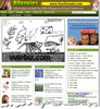 Thumbnail Allergy Website PLR - Allergies WordPress Blogs