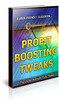 Thumbnail Profit Boosting Tweaks Unrestricted PLR Ebook