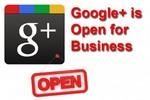 Thumbnail The Google+ Business Blueprint Unrestricted PLR Ebook
