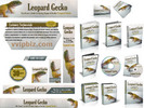 Thumbnail Leopard Gecko Website Template Plr Pack