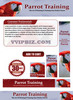Thumbnail Parrot Training - Parrots Website Template Plr Pack