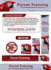 Thumbnail Parrot Training - Parrots Website Template Plr Pack