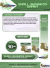 Thumbnail Small Business Grant Website Template PLR - PSD Pack