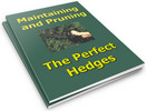 Thumbnail Maintaining and Pruning The Perfect Hedges PLR Reports