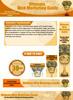 Thumbnail Web Marketing Website Template Plr Pack - Online Marketing