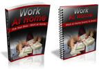Thumbnail Work At Home Blueprint PLR Ebook